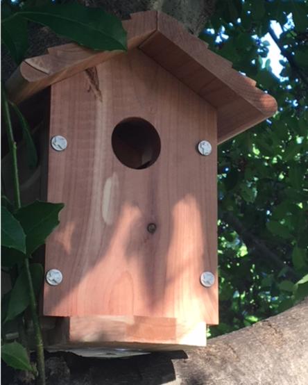 3rd bird house